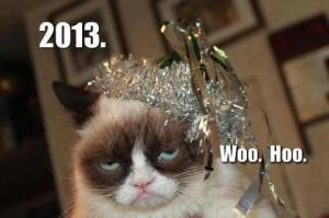 Grumpy Cat is enthused.